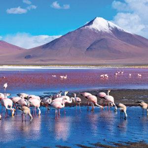 séjour à Chili