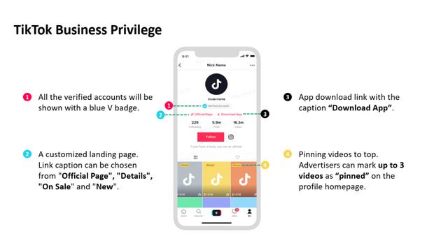 un compte professionnel officiel via la plateforme publicitaire TikTok