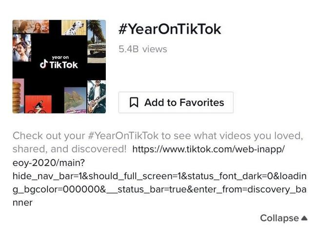 Comment accéder à votre « Year on TikTok »