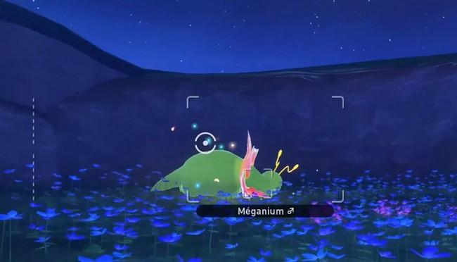 Méganium-new pokemon snap