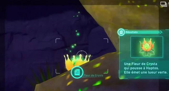 fleur de Crysta-Désert Sabrûlant